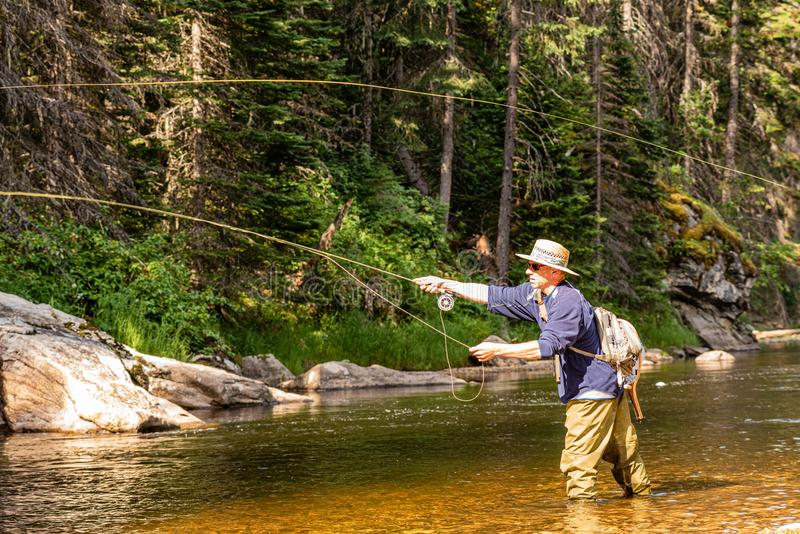 Fly fisherman fishing fresh water mountain stream for river trout royalty free stock images