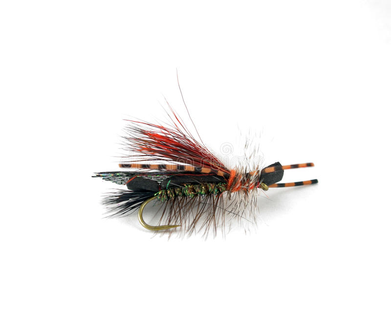 Fly for Fishing. Hand-tied fly for fishing stock photos