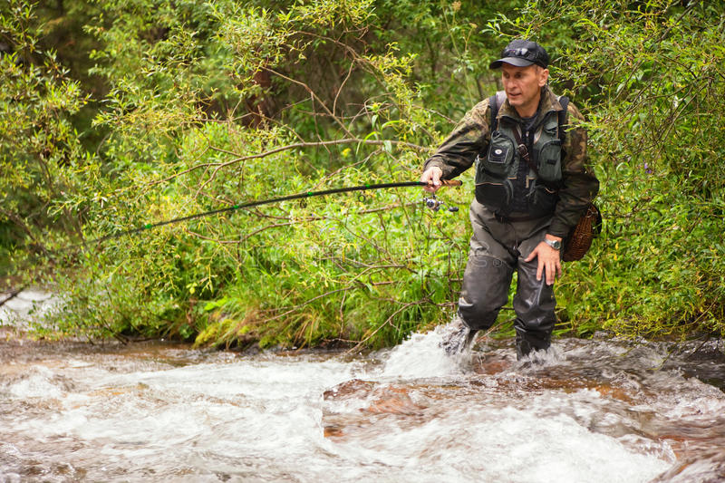 Fly-fishing. Fly fishing on the creek in mountain forest royalty free stock photo