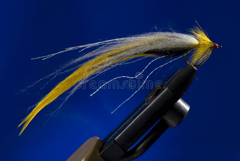 Fly-fishing lizenzfreies stockfoto