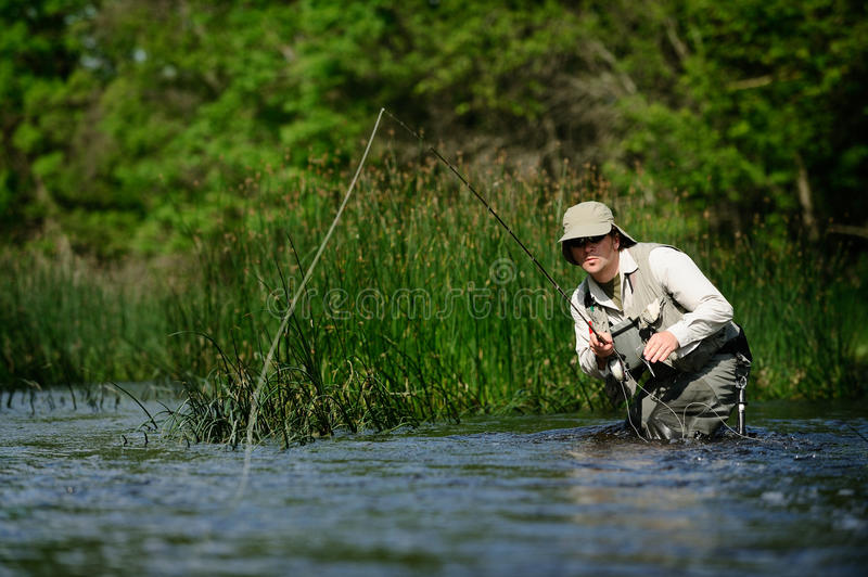 Fly-fishing fotografia de stock royalty free
