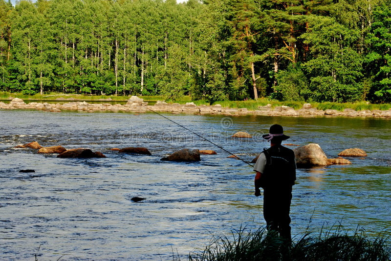 Download Fly fishing from the bank stock image. Image of outdoors - 4233949