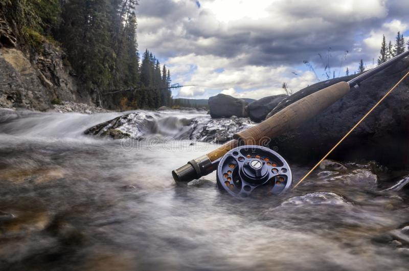 Fly Fishing in the Rocky Mountains with Dry Flies for Trout. Fly fishing the cold rivers in the Canadian Rocky Mountains for trout is the ultimate adventure stock photography