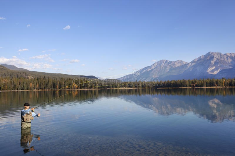 Download Fly Fishing In Rocky Mountains, Alberta, Canada Stock Photo - Image: 17479560