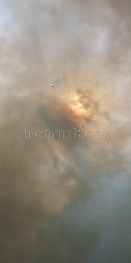 Fly från en brand, medan flyktigt arkivbild