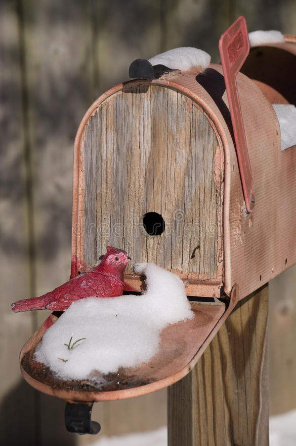 Fly Me Home. Toy Cardinal sitting on door of bird house mail box stock image