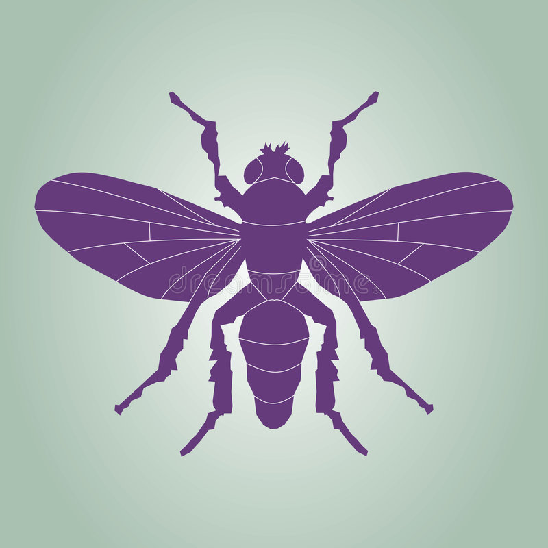 Fly silhouette. A vector illustration of fly silhouette vector illustration
