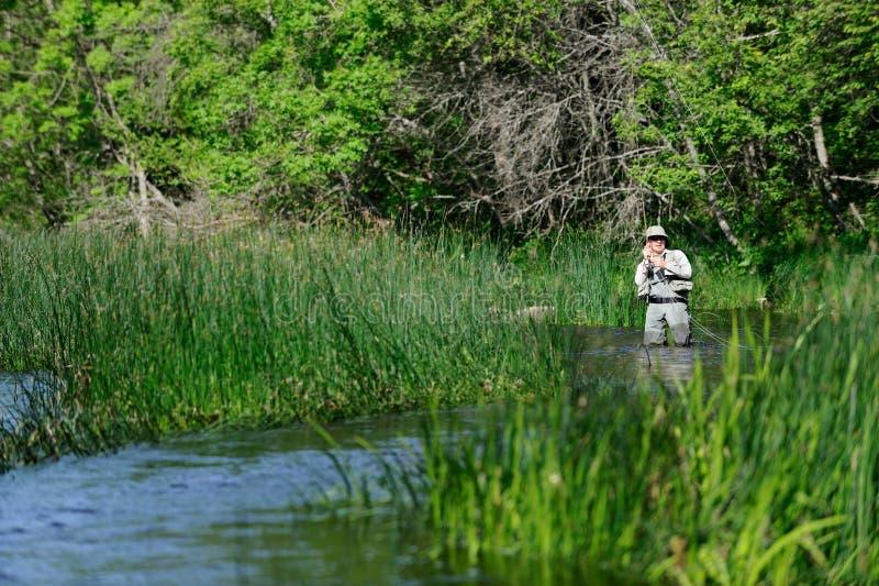 Flyfisher, das auf dem Fluss winkelt lizenzfreies stockfoto