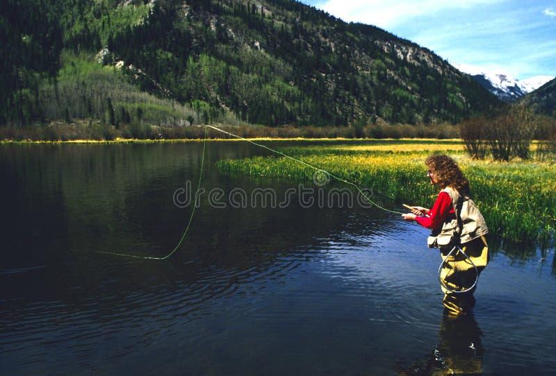 Flyfisher en el lago mountain imagenes de archivo