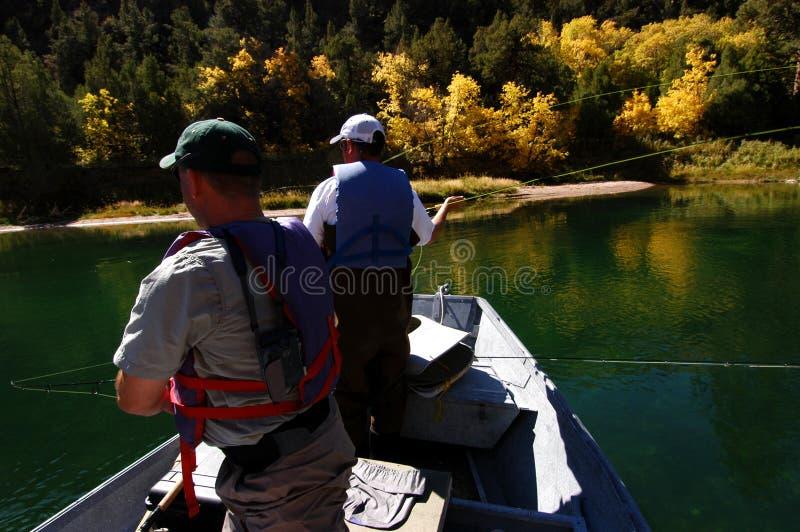 Flyfishing fotografie stock libere da diritti