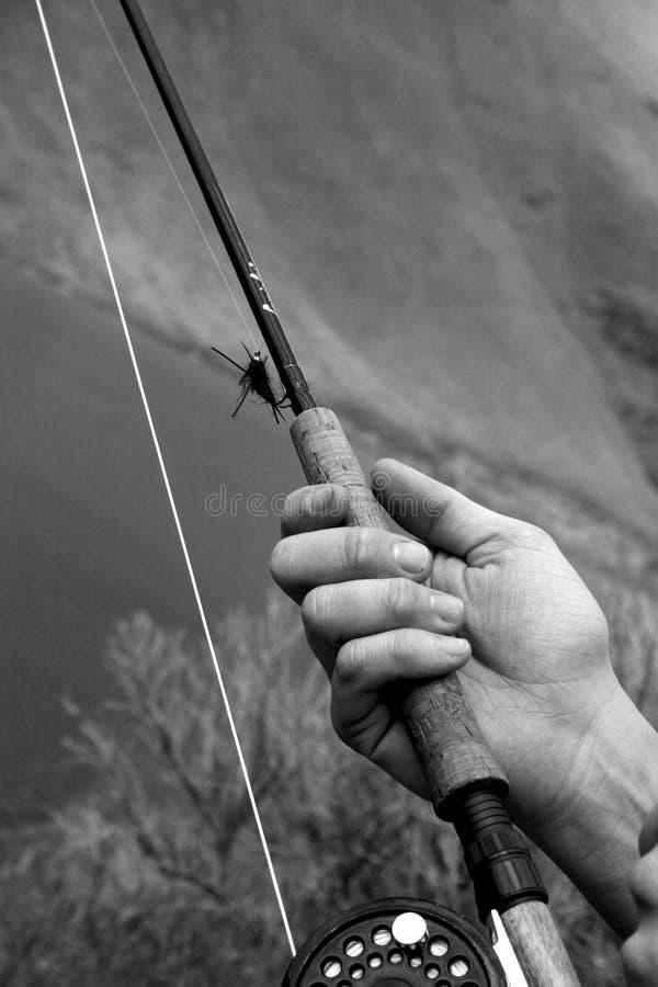 Flyfishing stock images