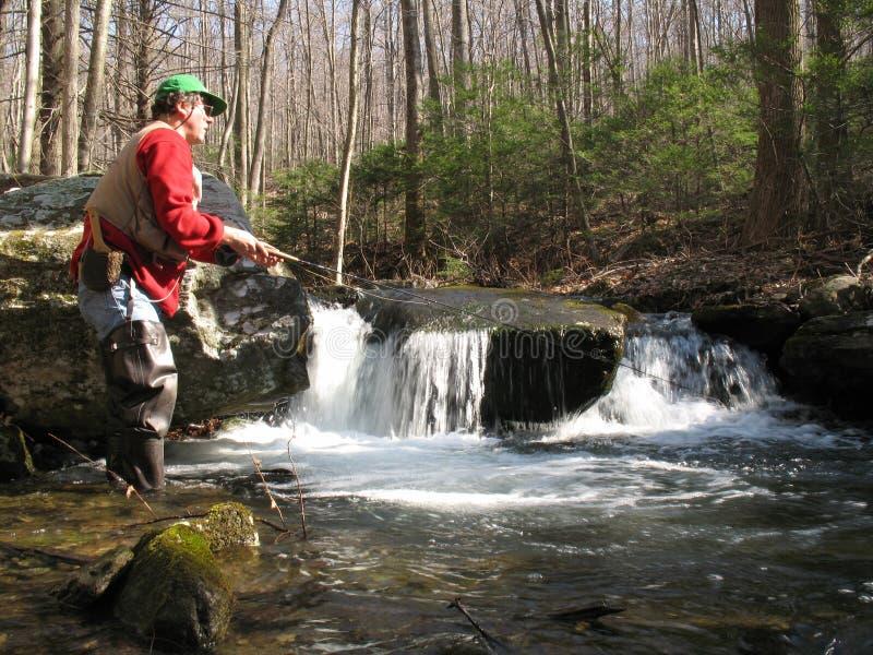 Flyfishing für Bachforelle stockfotografie
