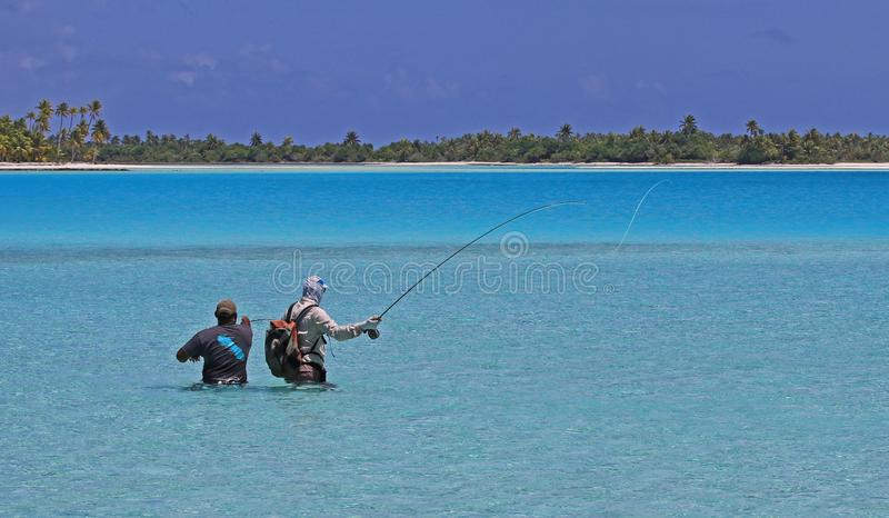 Flyfishing with Guide in French Polynesia stock photography