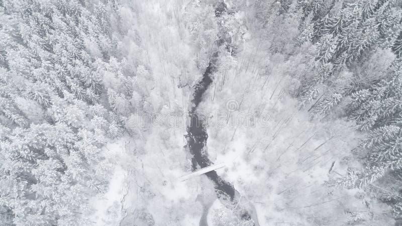 Flyg- överkant för vintersäsong ner sikt av en flod, en skog och en bro royaltyfri bild