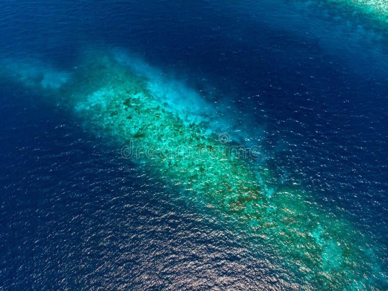 Flyg- överkant ner det tropiska karibiska havet för korallrev, turkosblått vatten Indonesien Wakatobi skärgård, marin- nationalpa royaltyfri bild