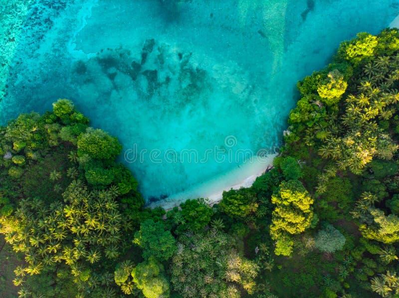 Flyg- överkant ner lagun för tropisk för paradis för sikt den blåa ursprunglig rainforest för strand på Banda Island, Pulau Ay In arkivbilder