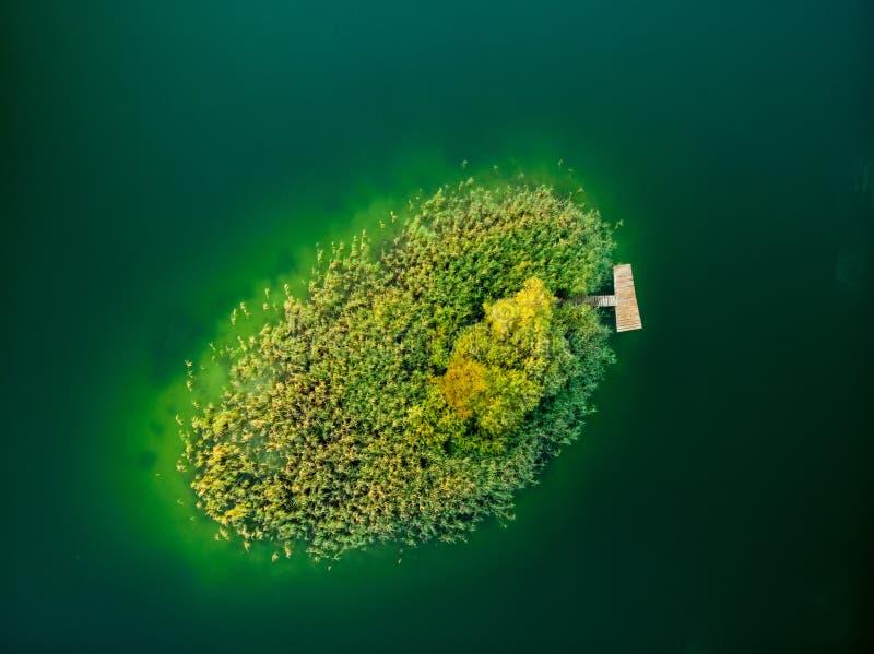 Flyg- överkant ner sikt av den lilla ön Sikt för fågelöga av härligt grönt vatten av sjön Gela som omges av pinjeskogar arkivbild