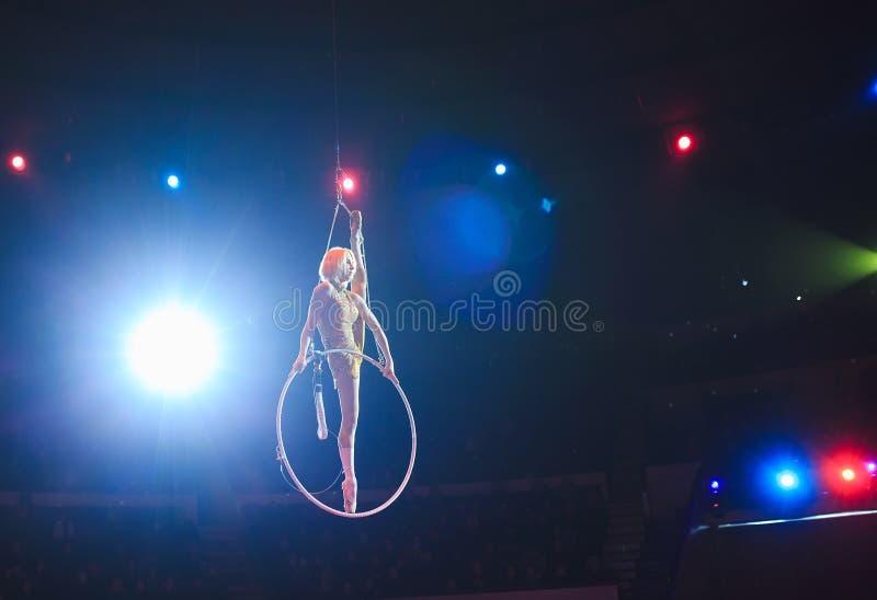 Flyg- akrobat i cirkeln En ung flicka utf?r de akrobatiska best?ndsdelarna i luftcirkeln arkivfoto