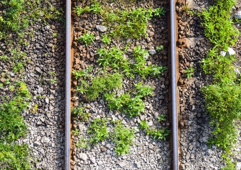 Flyg- bästa sikt av de rostiga stängerna som korsar det gröna fältet i en sommardag Flyg- sikt av järnvägsspår till och med bygd, royaltyfria foton