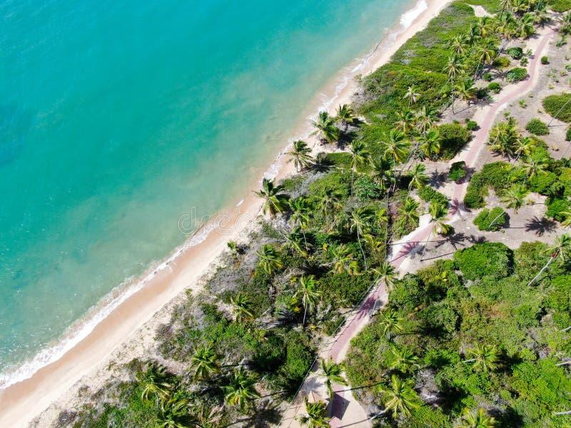 Flyg- b?sta sikt av tropiskt vitt vatten f?r hav f?r sandstrand- och turkosfrik?nd med liten v?gor och palmtr?dbakgrund royaltyfria bilder