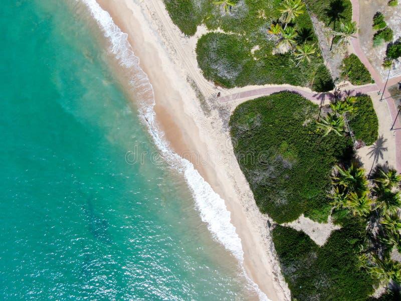 Flyg- b?sta sikt av tropiskt vitt vatten f?r hav f?r sandstrand- och turkosfrik?nd med liten v?gor och palmtr?dbakgrund royaltyfri bild