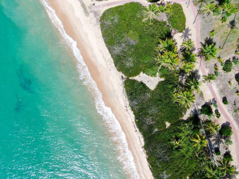 Flyg- b?sta sikt av tropiskt vitt vatten f?r hav f?r sandstrand- och turkosfrik?nd med liten v?gor och palmtr?dbakgrund arkivfoton