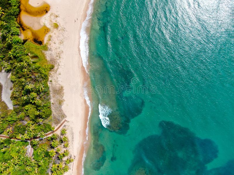 Flyg- b?sta sikt av tropiskt vitt vatten f?r hav f?r sandstrand- och turkosfrik?nd med liten v?gor och palmtr?dbakgrund arkivbilder