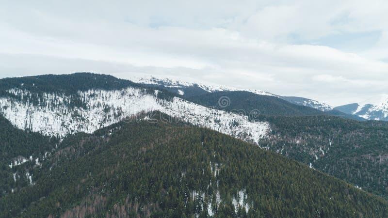 flyg- bergsikt snow Vinter royaltyfri foto