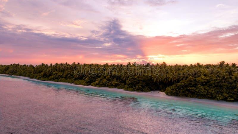 Flyg- brett skott av en strand med träd bredvid havet i Maldiverna under solnedgång royaltyfri bild