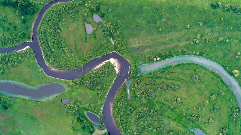 Flyg- ekosystem för bästa sikt av den skogfloden och sjön på ängdalen, textur av skogsikten från över royaltyfri bild