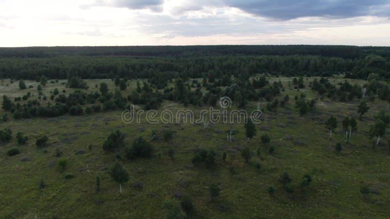 Flyg-: Fält för skogar för kullar för naturlandskap härliga och vingårdar av Karpaty, Ukraina arkivbild
