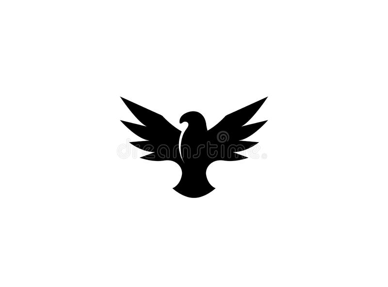 Flyg för vingar för fågelsvartörn öppet för logodesign vektor illustrationer