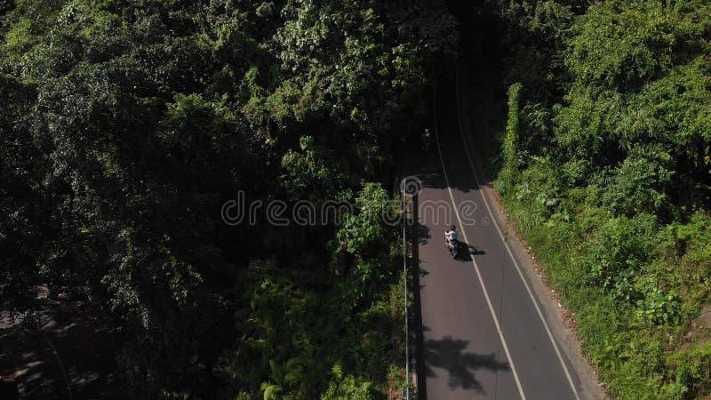FLYG- längd i fot räknat för surr 4K av ridningmopeden för ung kvinna Bali ö royaltyfri fotografi