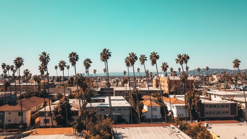 Flyg- landskapskott av ett förorts- område av staden med palmträd och klar blå himmel arkivbilder