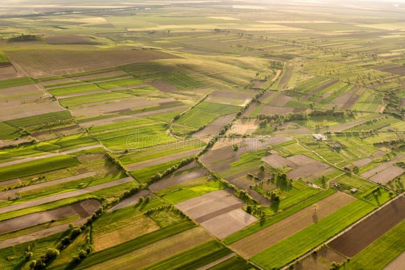 Flyg- sikt över en härlig lantlig plats med gräsplanfält och träd på den guld- timmen på våren arkivbild