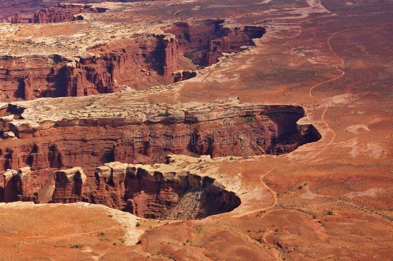 Flyg- sikt av branta kanjoner uppifrån av en hög mesa, Canyonlands nationalpark, Utah, USA royaltyfria foton