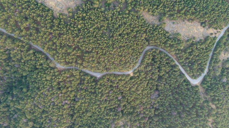 Flyg- sikt av bygdvägen som passerar till och med det gröna mest forrest och berget på solnedgången arkivfoton