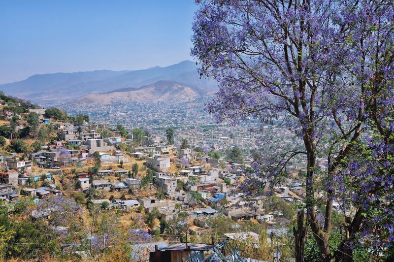 Flyg- sikt av byn i Oaxaca royaltyfria foton