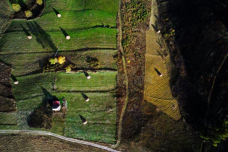 Flyg- sikt av Carpathians bergbygd royaltyfri bild