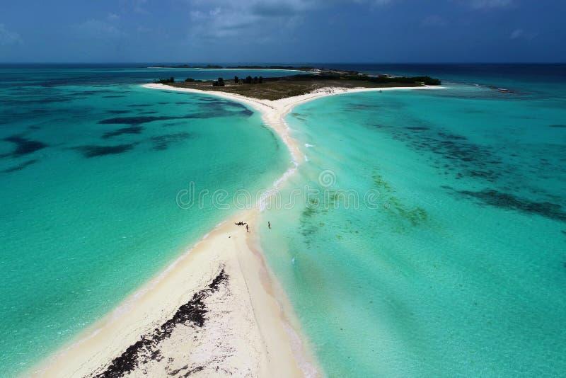 Flyg- sikt av Cayo de Agua, en fantastisk karibisk strand fotografering för bildbyråer