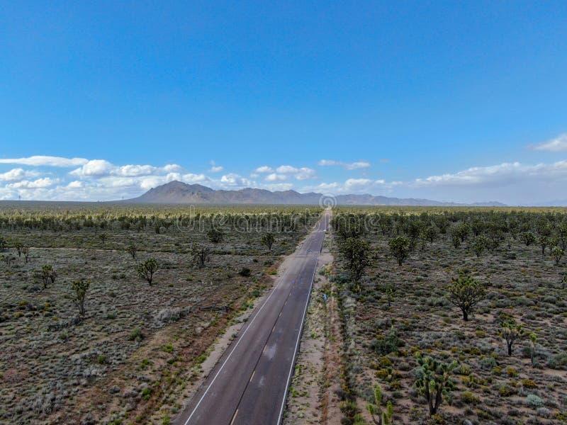 Flyg- sikt av den ändlösa raka vägen i öknen av Joshua Tree Park USA royaltyfria bilder