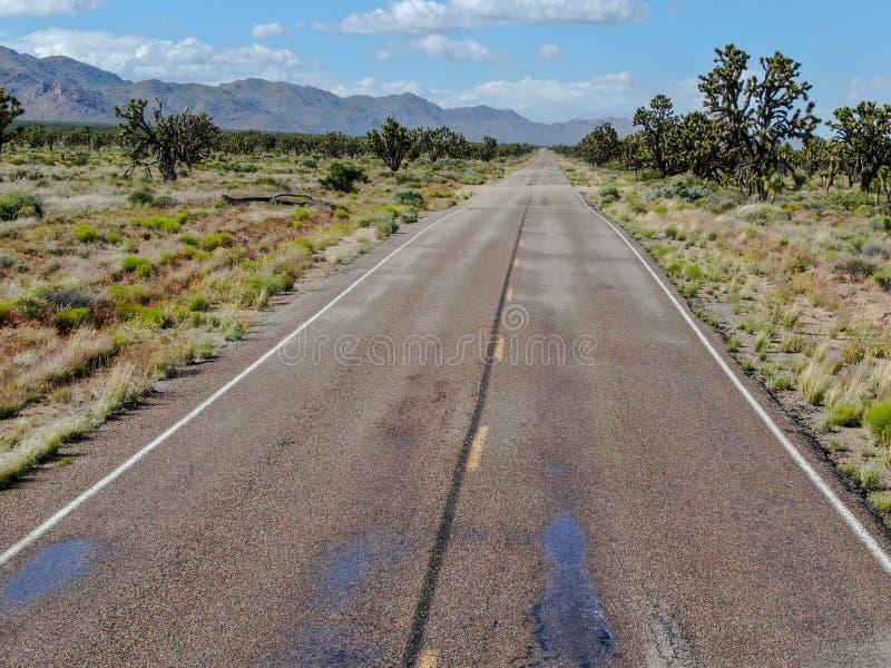 Flyg- sikt av den ändlösa raka vägen i öknen av Joshua Tree Park USA royaltyfri fotografi