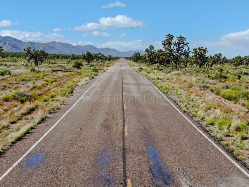 Flyg- sikt av den ändlösa raka vägen i öknen av Joshua Tree Park USA arkivfoto