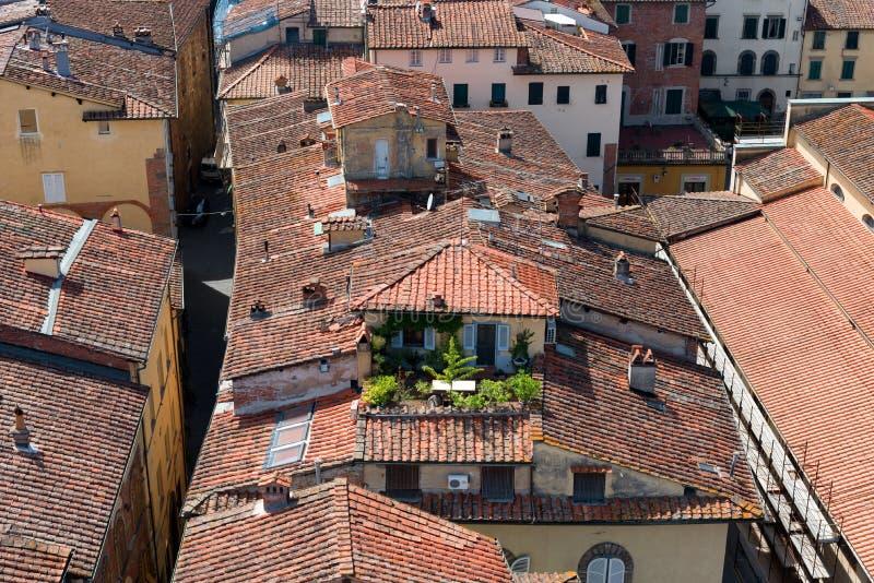 Flyg- sikt av den lilla medeltida staden av Lucca, Toscana Tuscany, Italien, Europa Sikt från det Guinigi tornet fotografering för bildbyråer