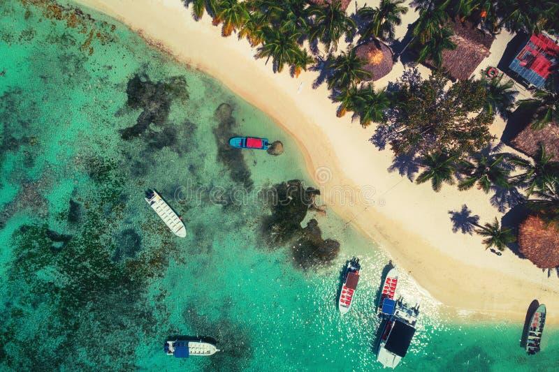 Flyg- sikt av den tropiska östranden i den Punta Cana semesterorten, Dominikanska republiken arkivbild
