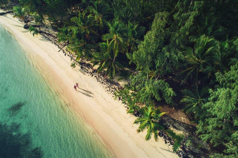 Flyg- sikt av den tropiska stranden, Dominikanska republiken