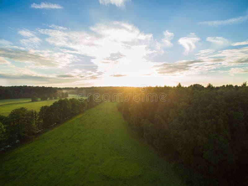 Flyg- sikt av en härlig solnedgång över lantligt landskap med skogar och gräsplanfält arkivfoto