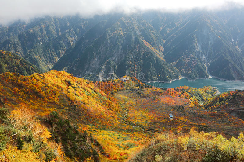 Flyg- sikt av en scenisk kabelbil som flyger över höstdalen i Tateyama Kurobe den alpina rutten, Japan royaltyfria foton
