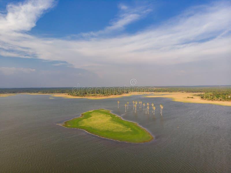 Flyg- sikt av en sjö med palmträd och en härlig liten ö som är berömd för fågeln som bygga bo med grön vegetation arkivbild