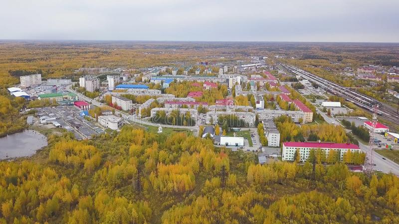Flyg- sikt av en stad i sen höst med gröna och orange kulöra gataträd gem Härligt landskap med ljust arkivbilder